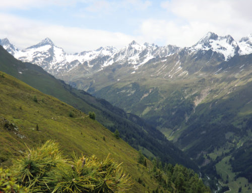 Wandern in Osttirol – Am Zettersfeld Lienz