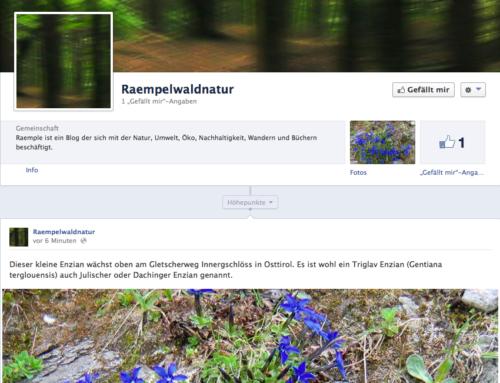 NEU – Die facebook-Seite von raempel