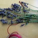 lavendel zapfen selber machen