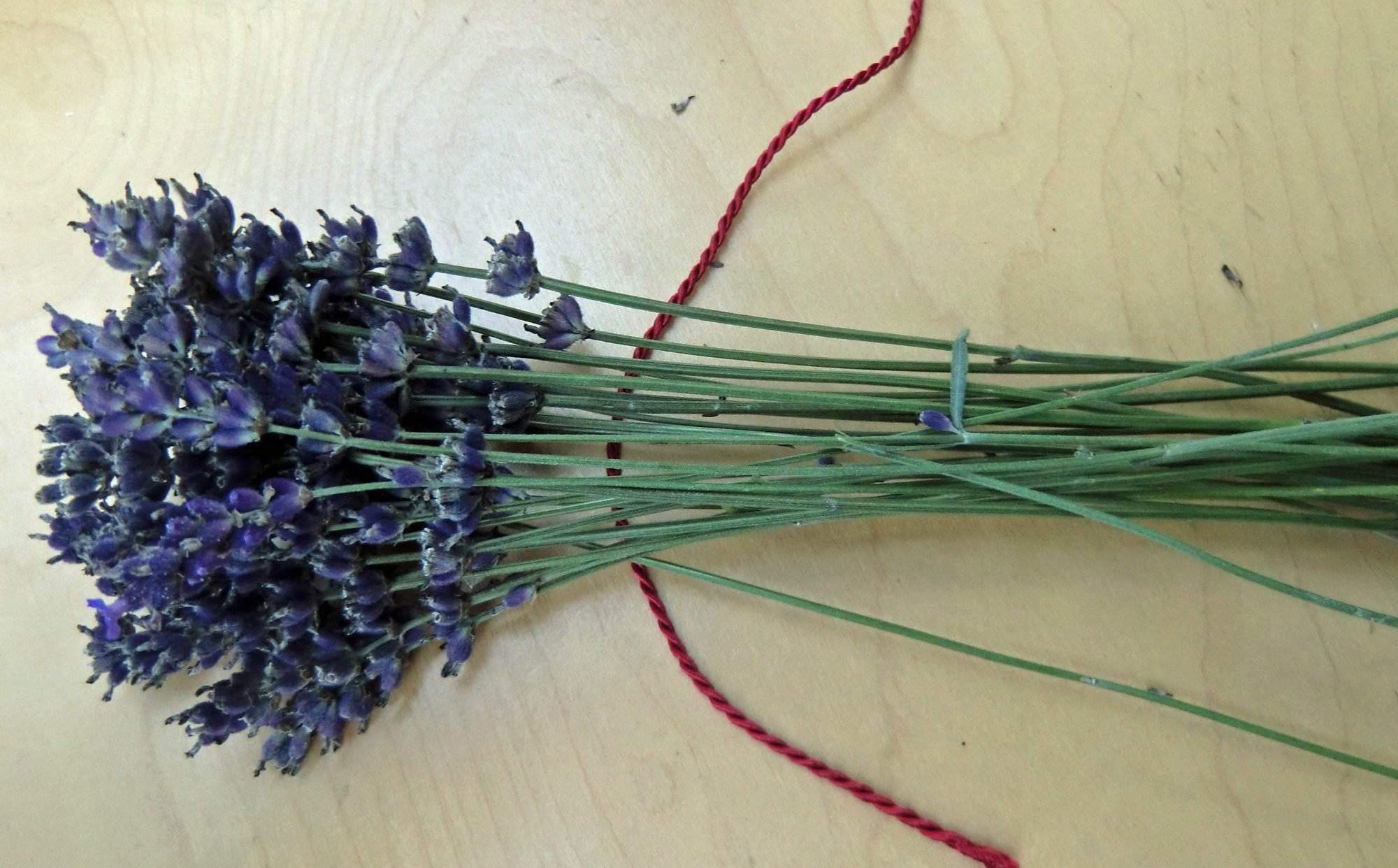 basteln mit lavendel free badesalz lavendel with basteln. Black Bedroom Furniture Sets. Home Design Ideas