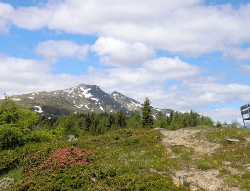Böses Weibele Lienz – Wandern in Osttirol