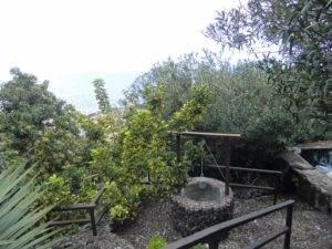 Blick auf einen Garten mit Brunnen, Garachico auf Teneriffa