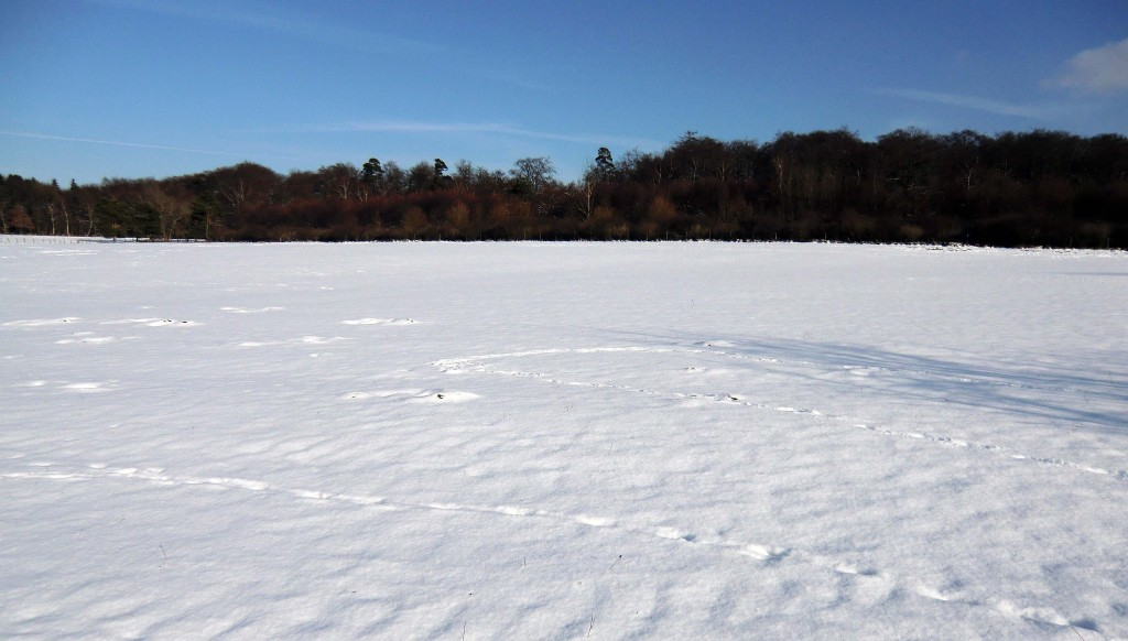 Der Blick über eine weite Schneefläche wie diese ist ein guter Platz zum Meditieren.
