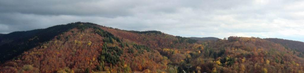 Herbstfarben an den Berghängen des Harz bei Bad Lauterberg