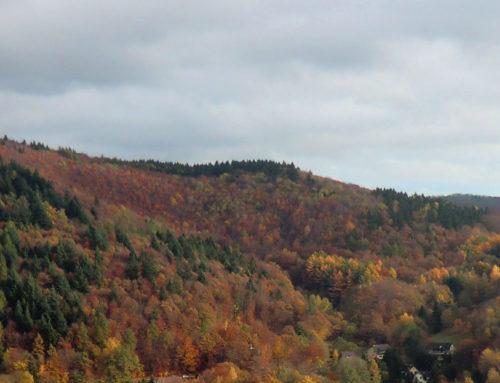 Herbst in Bad Lauterberg im Harz
