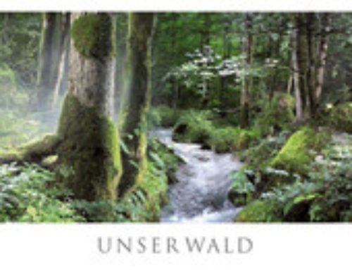 Tipp: Der Panorama Kalender Wald