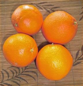 Bio - Orangen (Citrus sinesis)