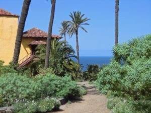 Wanderung Teneriffa Puerto de la Cruz