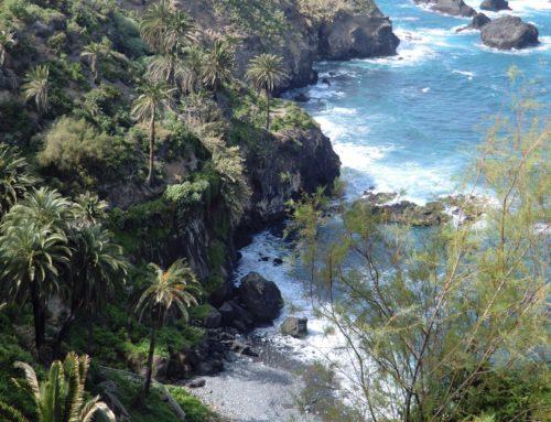 Wanderung Teneriffa – Entlang der Nordküste