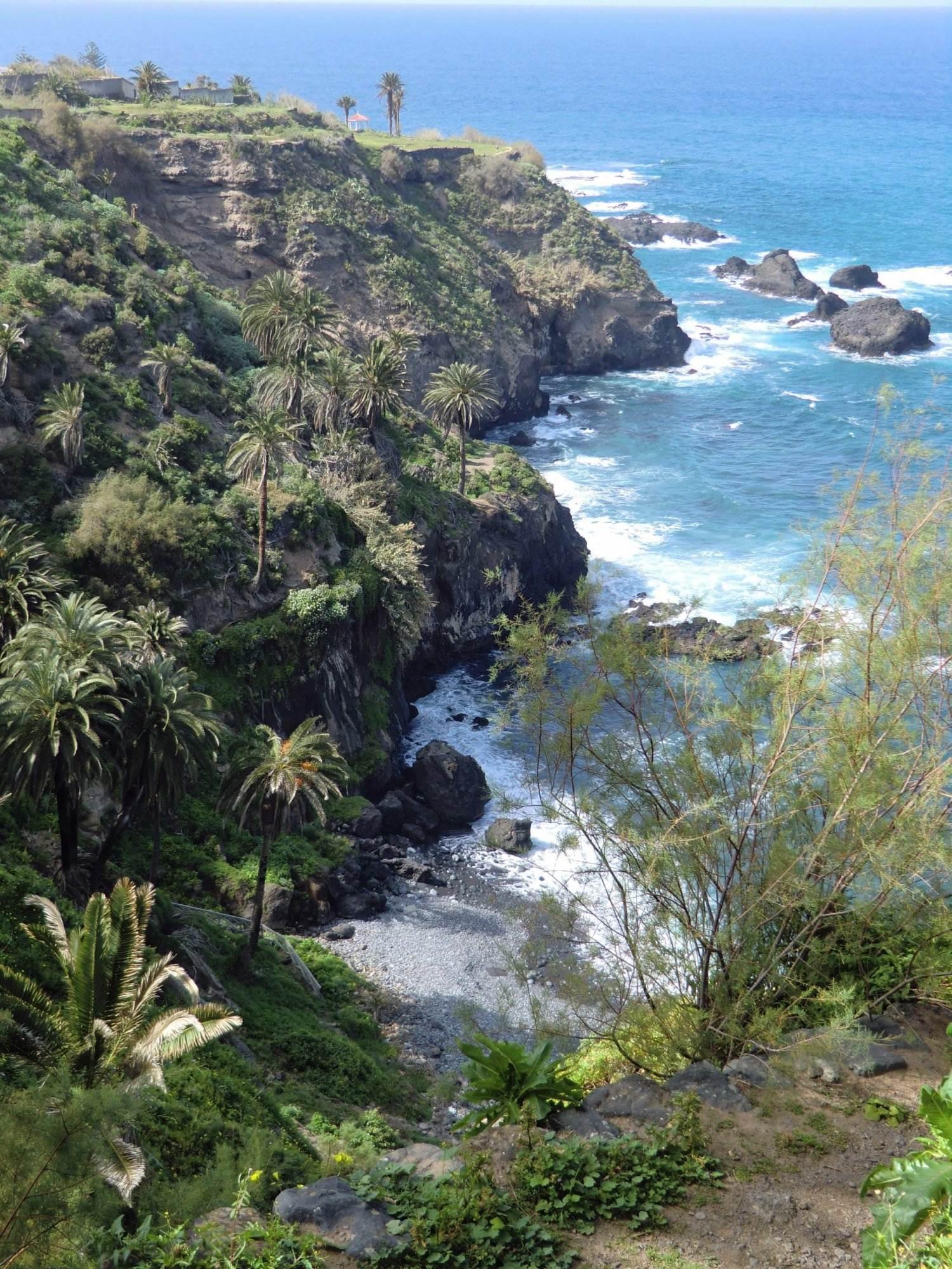 Wanderung Teneriffa, Steilküste und Palmen.