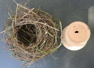 Naturdekoration ostern 1