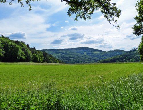Taunus Rundwanderweg – Merzhausen