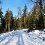 4 schnee weg s