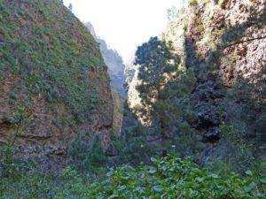 Blick in den Barranco de Amanca am Ende des Wanderweges, Teneriffa.
