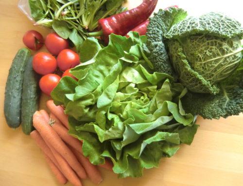 Biokiste – Natürlich und gesund essen
