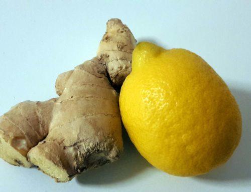Tee Ingwer Zitrone – Rezept für kalte Tage und beim Fasten