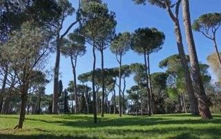 grüne oase in rom villa borghese