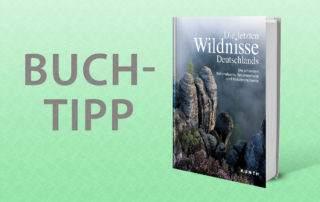 Buch wildnis in Deutschland