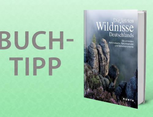 Buchtipp – Die letzten Wildnisse Deutschlands