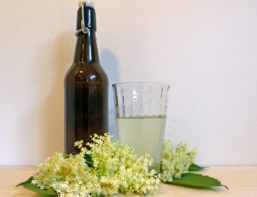Rezept – Holunderblütensirup natur