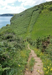 south west coast path cornwall megavissey