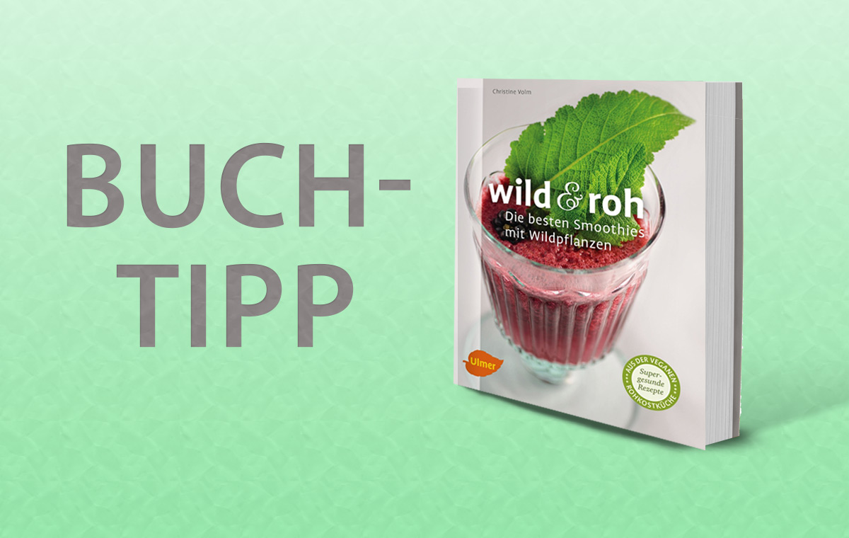 smoothies mit wildpflanzen buch