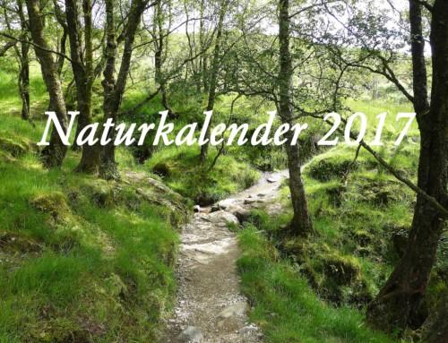 Naturkalender 2017- FLORA von Tan Kadam
