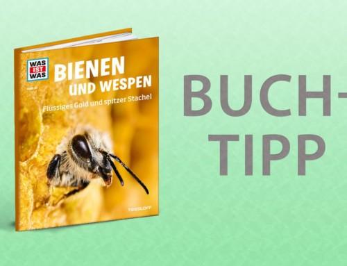 Buchtipp – Was ist Was Bienen und Wespen