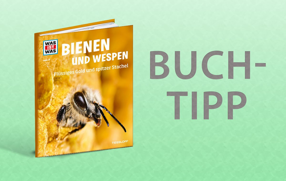 buchtipp was ist was bienen und wespen raempel. Black Bedroom Furniture Sets. Home Design Ideas