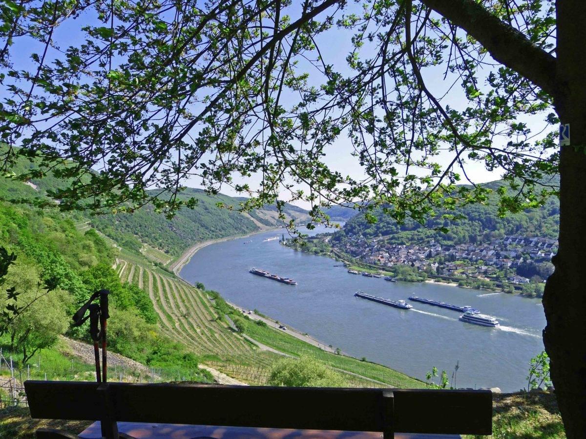 Rheinsteig Etappe 5 Rheinblick