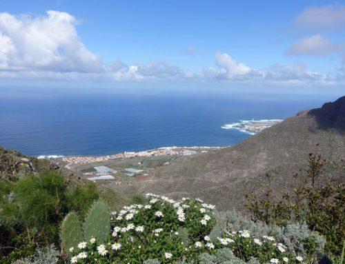 Teneriffa – Wandern im Anaga Gebirge von Tegueste nach Bajamar