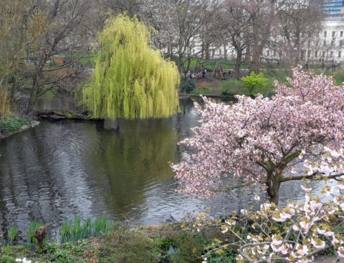 Berühmte Gärten – St. James's Park in London
