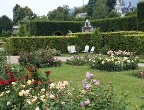 Berühmte Gärten – Der Rosengarten in Baden-Baden, Gönneranlage