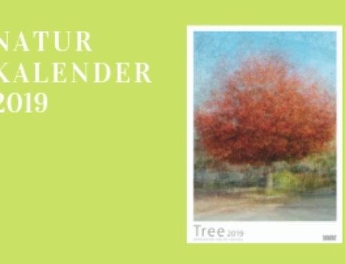 Naturkalender 2019- TREE mit Fotos von Pep Ventosa