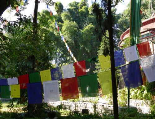 Berühmte Gärten – Norbulingka in Dharamsala Indien