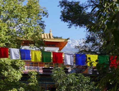 Norbulingka Institute Dharamsala – Unterkunft im Norling House