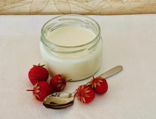 Jogurt laktosefrei selber machen und Plastikmüll vermeiden
