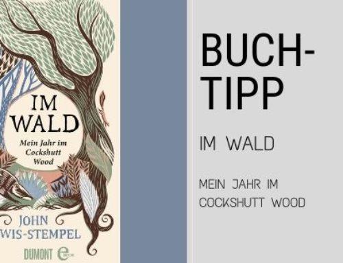 Buchtipp – Das Buch Im Wald von John Lewis-Stempel